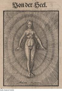 Theosophie & Alchemie