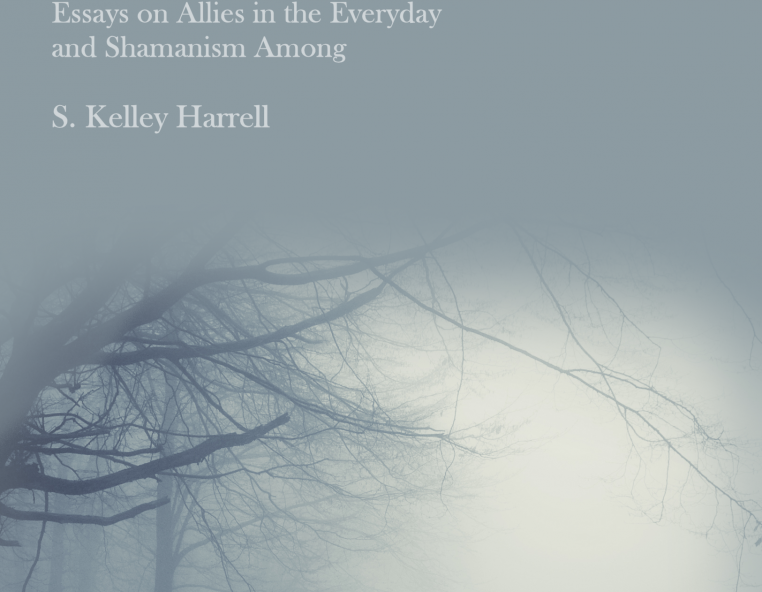 books on shamanism and healing pdf