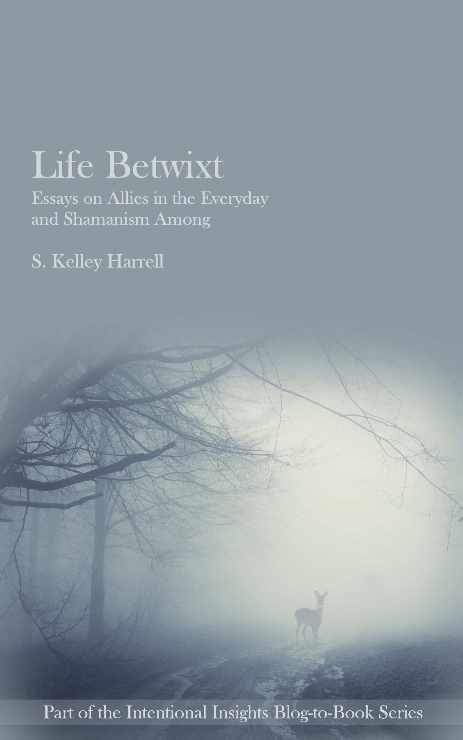 Life Betwixt--Essays on Allies in the Everyday and Shamanism Among by S. Kelley Harrell